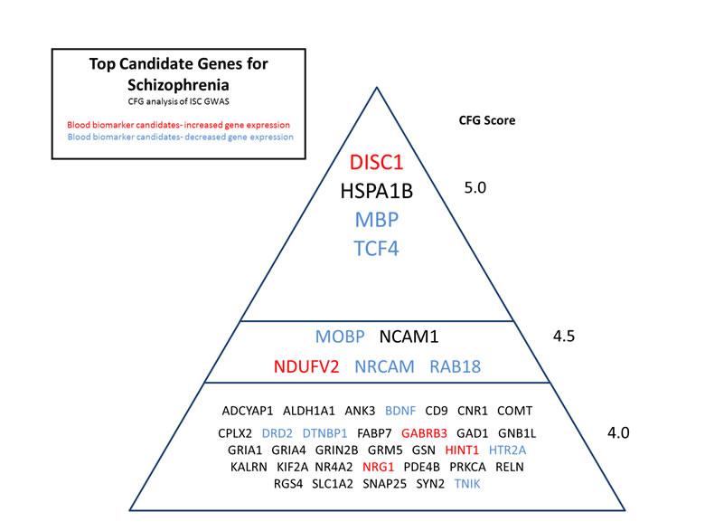 schizophrenia in pdf file